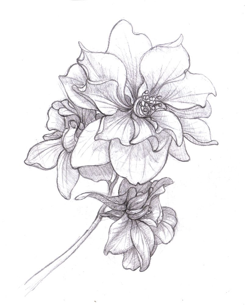 March Birth Flower Tattoo Pictues
