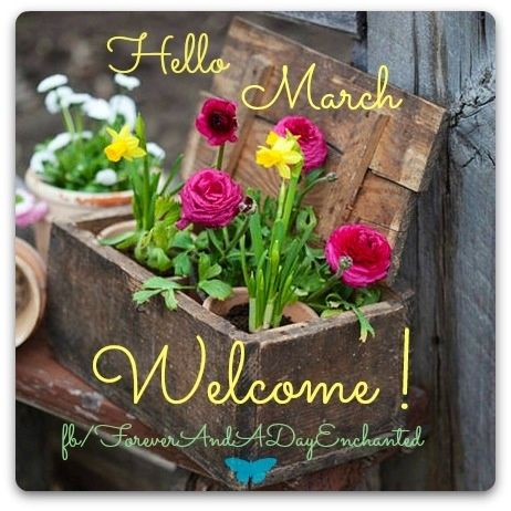 Welcome March Month Flower